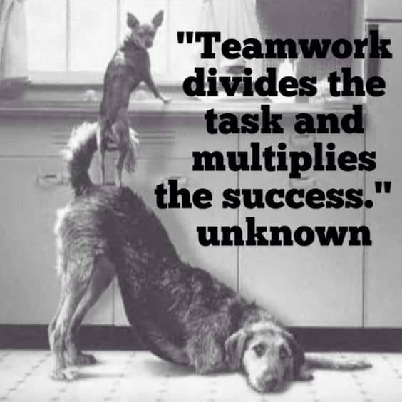 The Teamwork Approach to Health