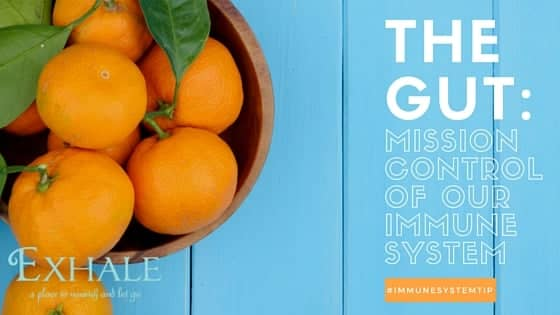 The Gut: Mission Control of Our Immune System